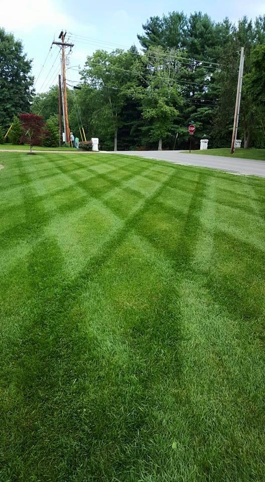Striping-lawns.jpg