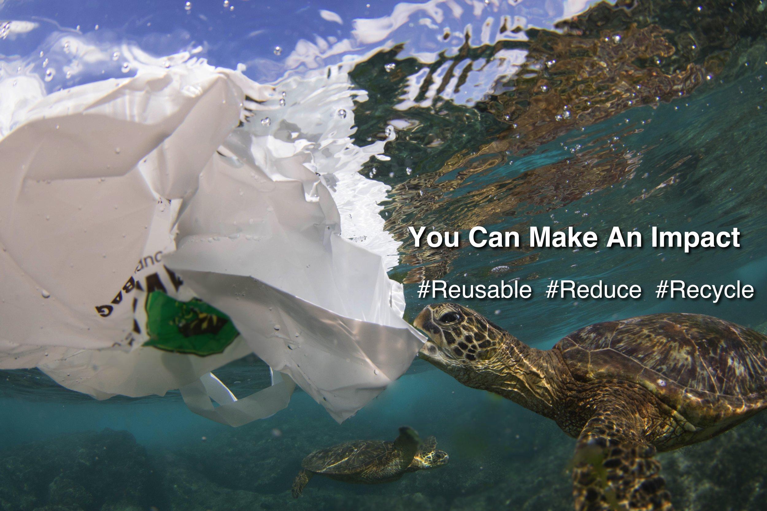 Honu Plastic Bag Sticker Design.jpg