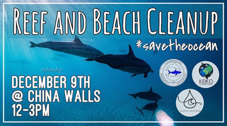 Aloha, everyone! Thank you for all of the love and support with last' month's cleanup :) You are all amazing. We would love for you to join us again THIS month, Saturday, December 9th at China Walls from 12-3. All updates and details will be posted on our instagram page so please check us out over there :) @oneoceanconservation