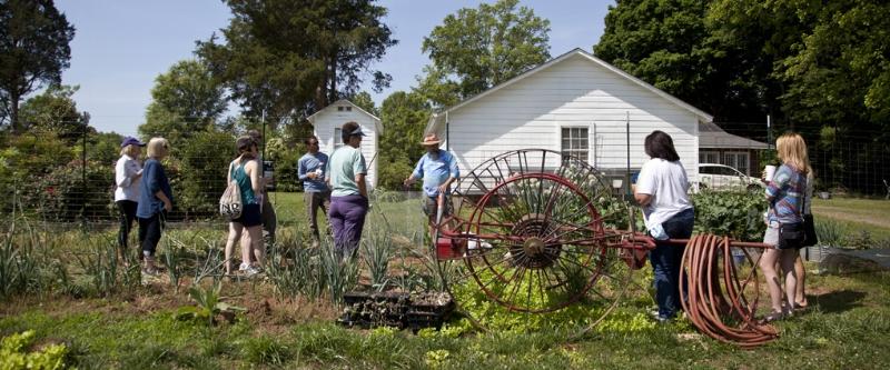 Photo courtesy of  renfrowfarms.com