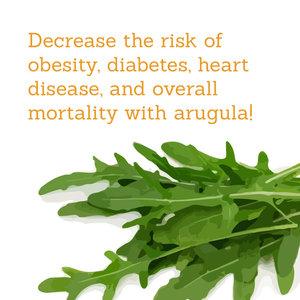 Pop Up Produce Food Facts Arugula