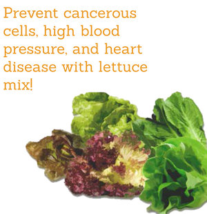 Pop Up Produce Food Facts Lettuce Mix