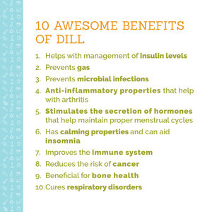 Pop Up Produce Food Facts Dill