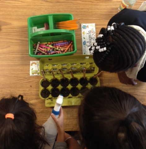 Girls watering pop up produce 2.JPG
