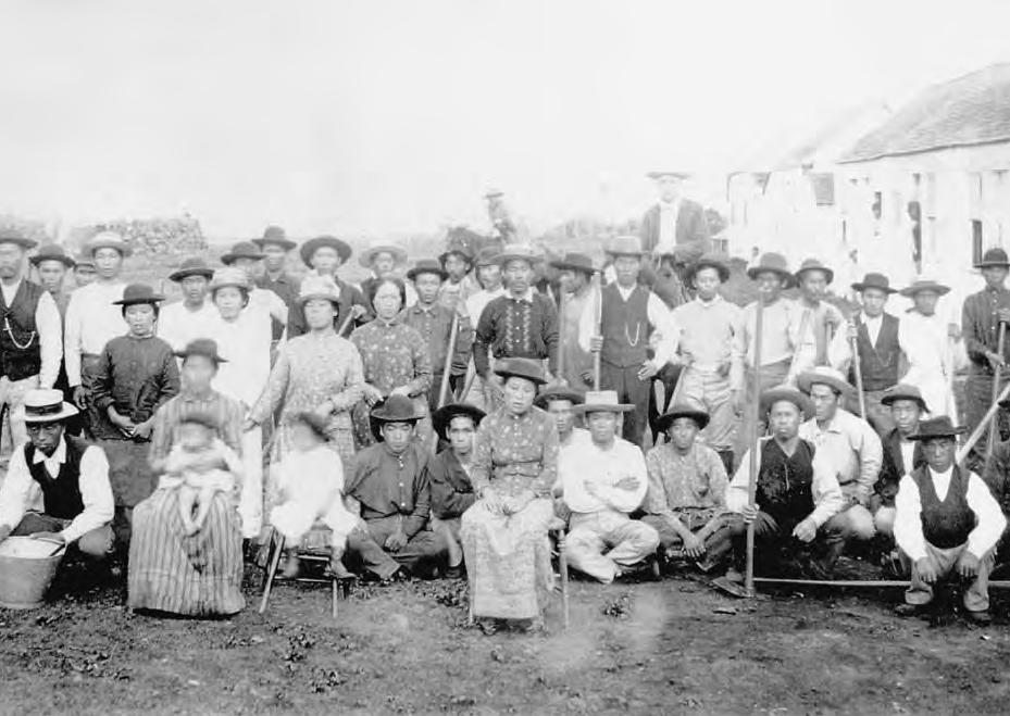 Japanese plantation workers in Hawaii, c. 1890  via