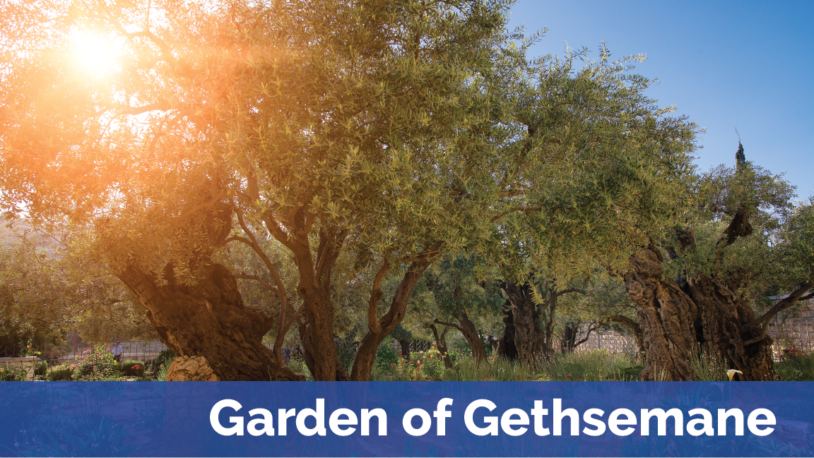 Garden of Gethsemane with Footer.png
