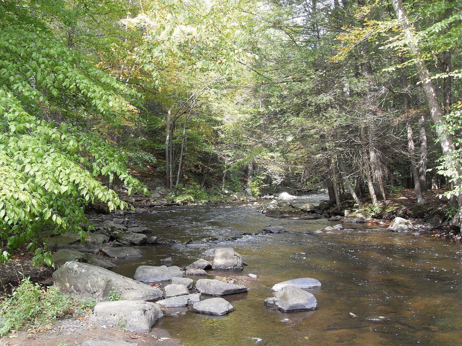 Hacklebarney State Park  Photo by Ekem/CCA-SA 3.0