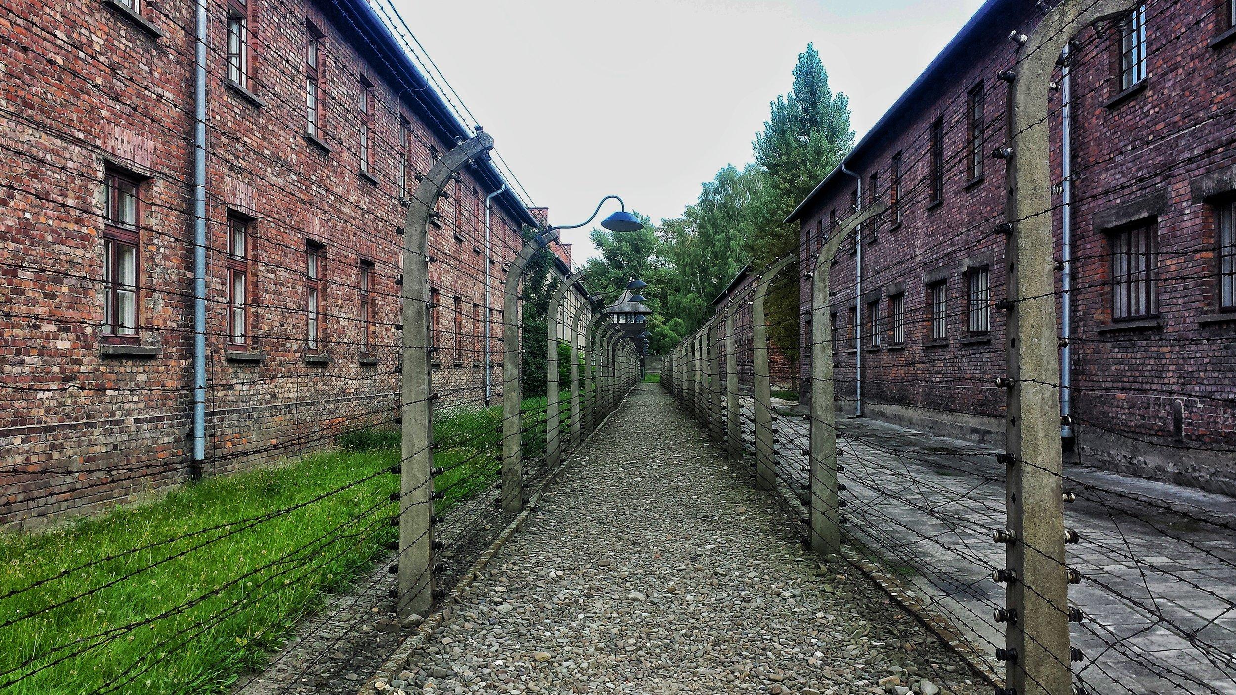 Auschwitz - pixabay - larahcv.jpg