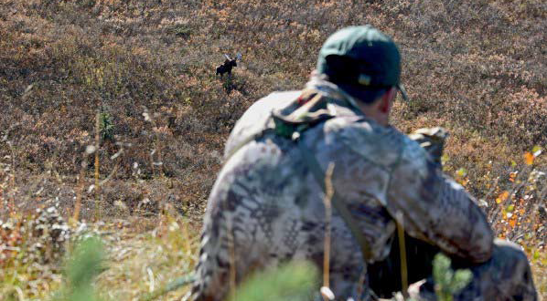 Now is my chance. Nothing but 250 yards and my  Kryptek  camo separated me from the bull.