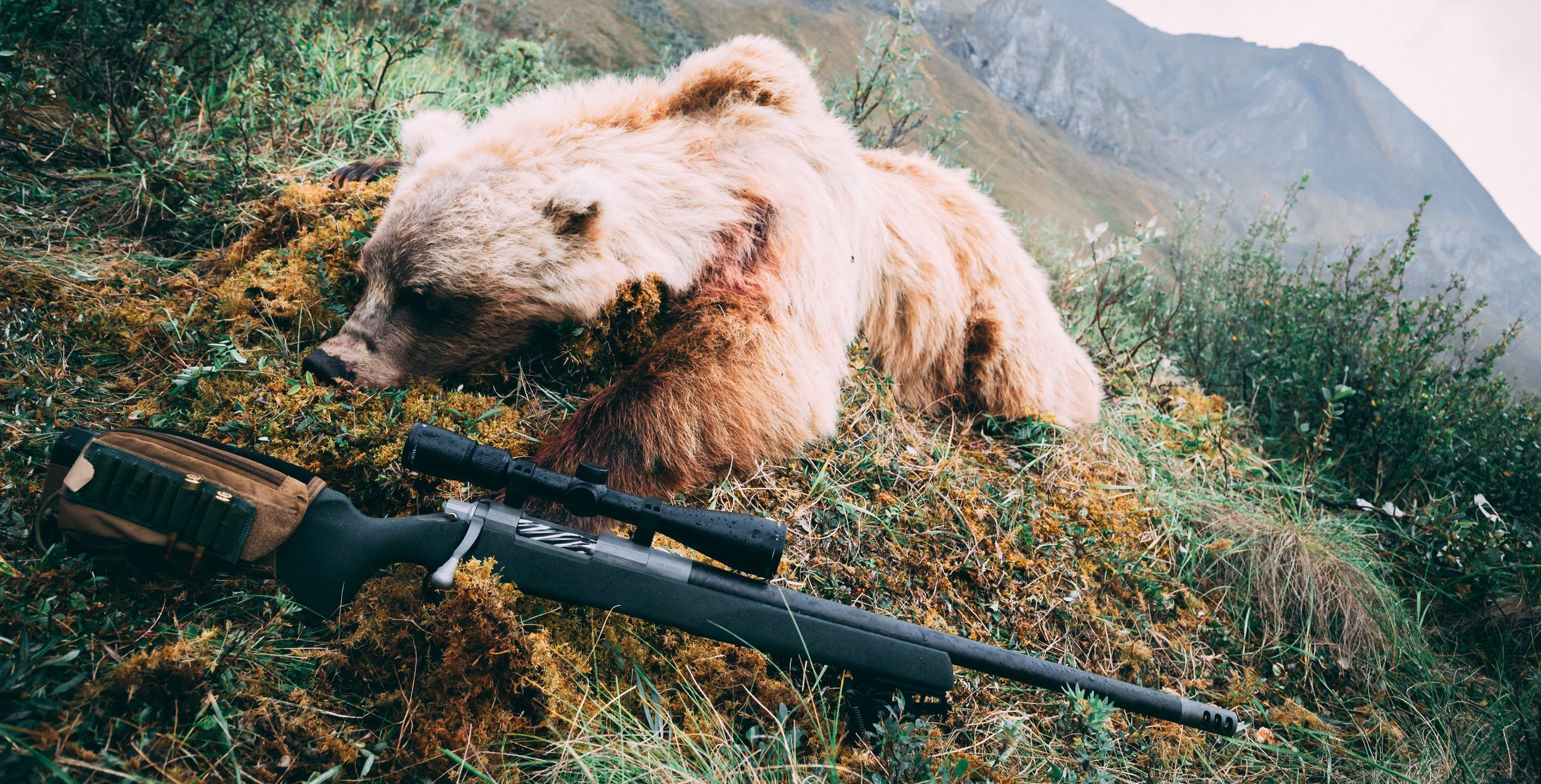 The author's 2017 arctic grizzly bear with a custom built 300 WSM built by  Blue Mountain Precision