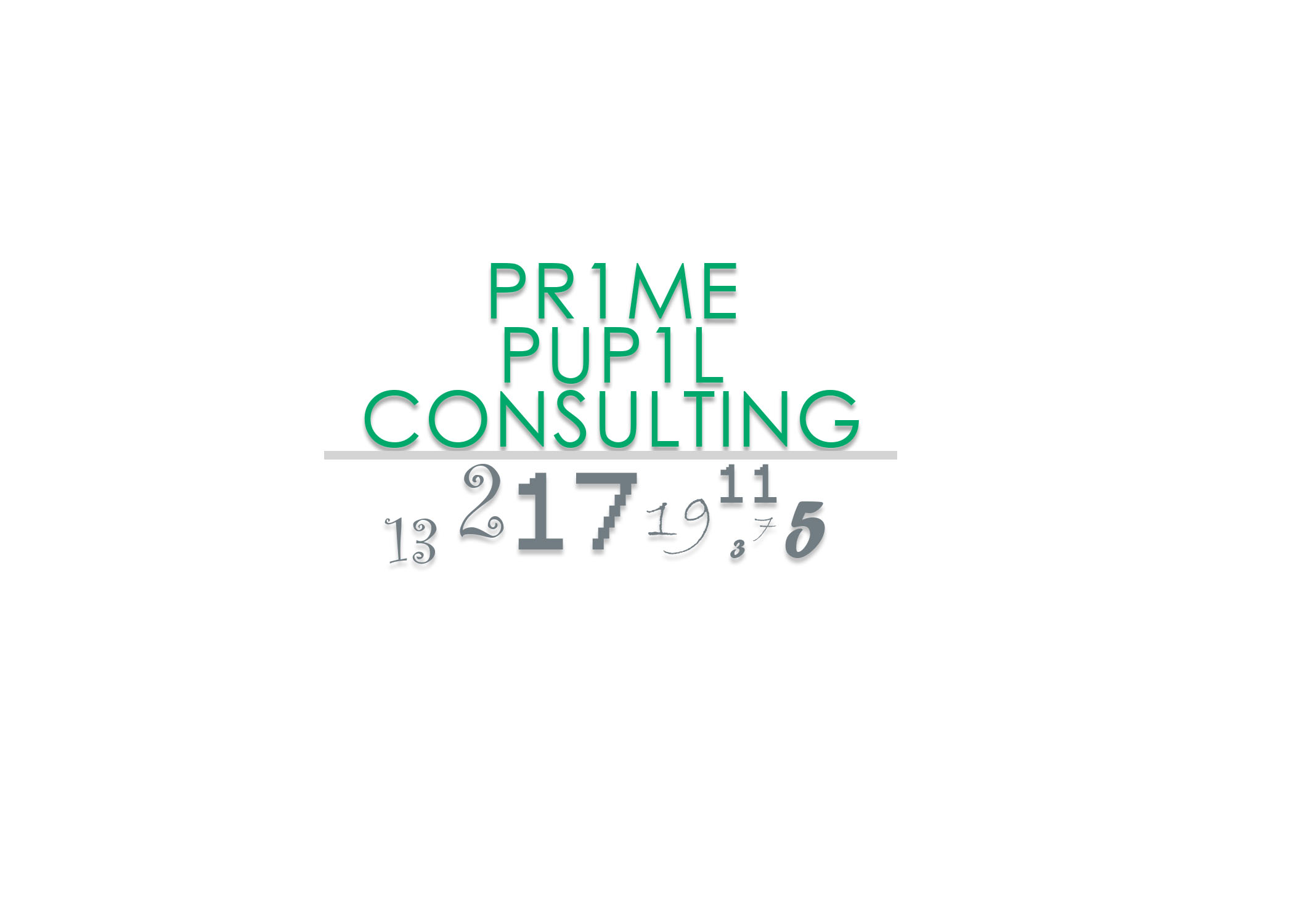 Prime Pupil Consulting.jpg