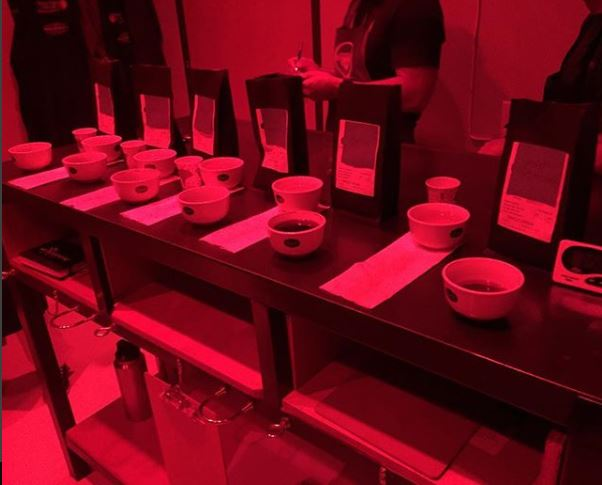 Cupping in the Red Room at IBCA - October 2016