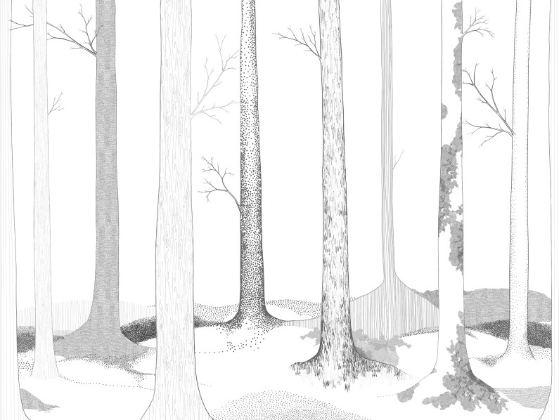 WALLPAPER |'In the forest lives' by Rebel walls