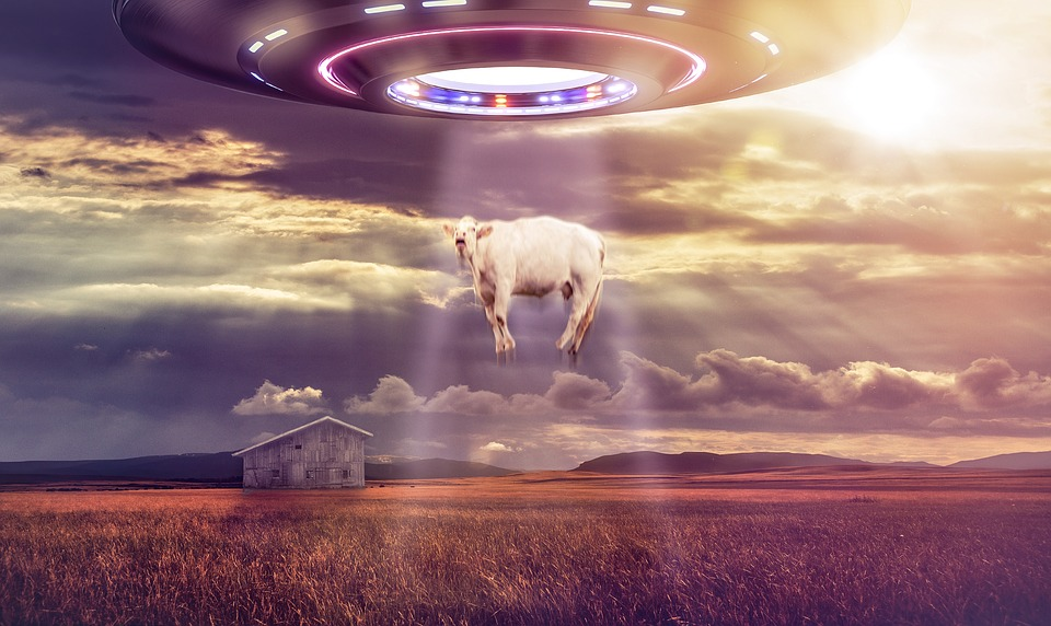 cattle and aliens