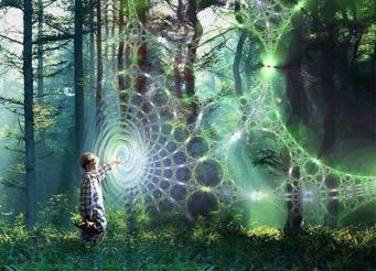 Is Reality something we create?