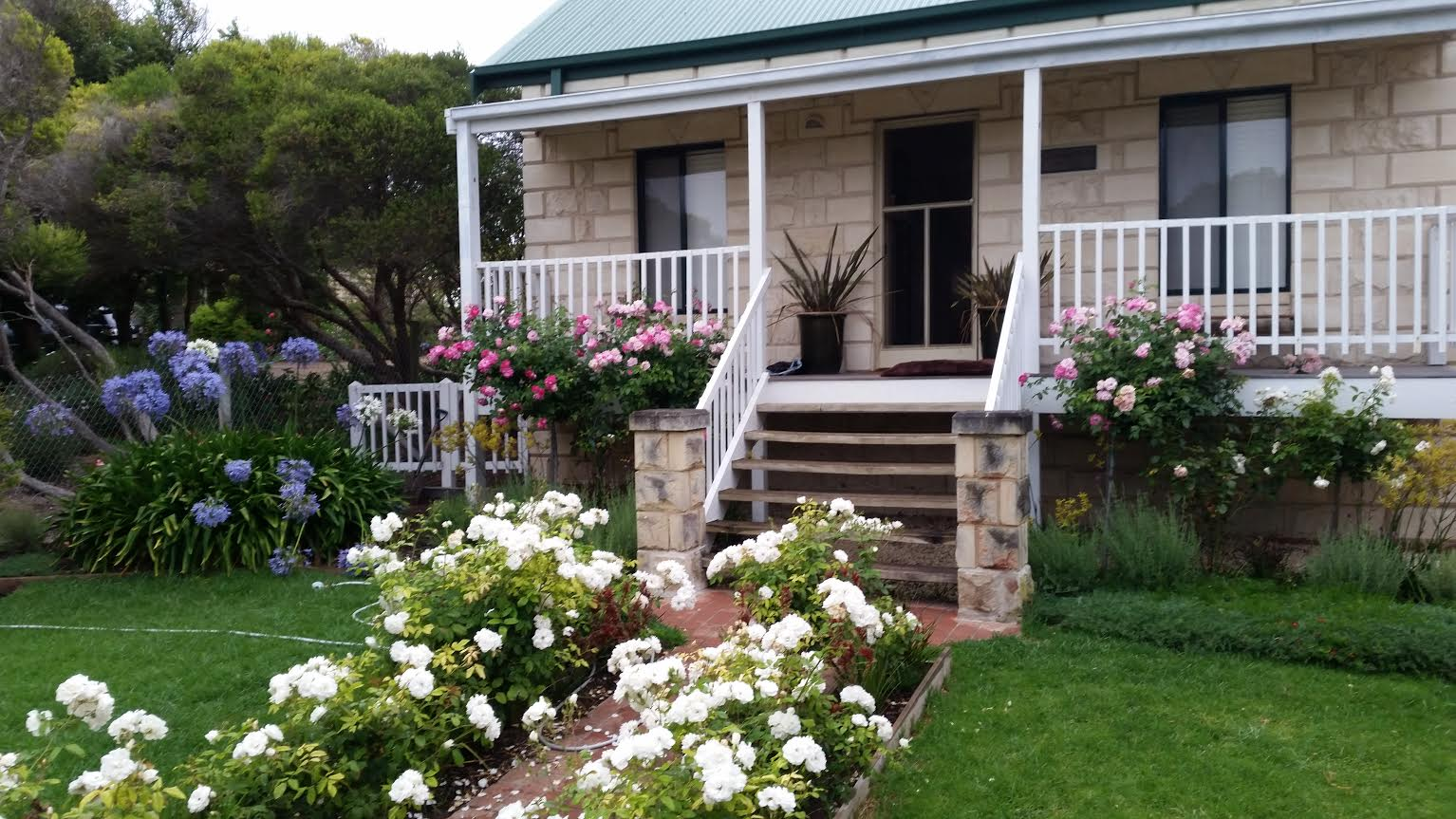 Blairgowrie Beach Cottage, I went to discover the beaches that surround this gem I was amazed