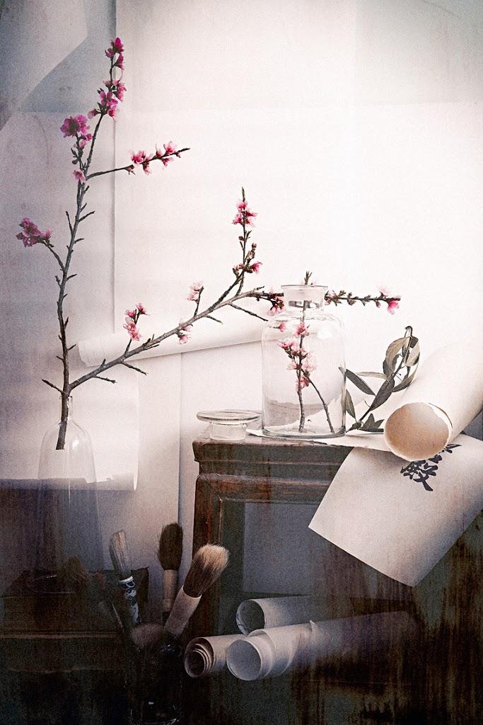 FirstDayOfSpring_OldMonk_Calligraphy_Brushes_Blossoms_NectarineBrunches_Cloche_GlassJar_SophiaTerraZiva