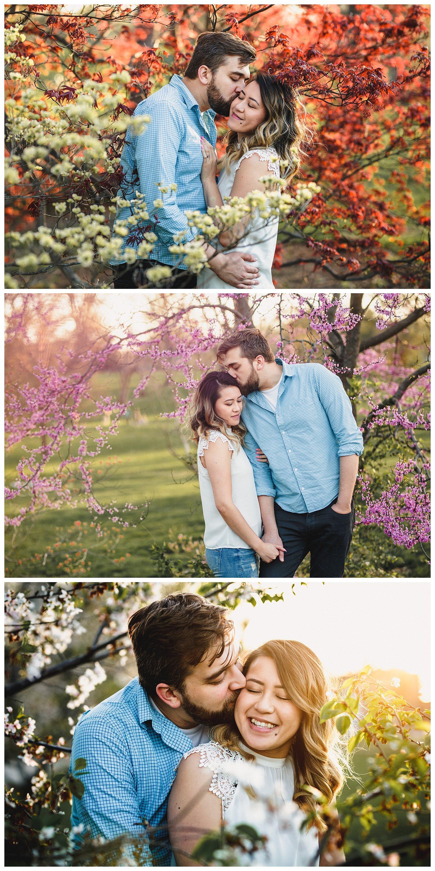 Kelsey_Diane_Photography_Kansas_City_Engagement_Loose_Park_Dog_In_Home_Engagement_Rosa_Joe_Pit_Bull_Loose_Park_0561.jpg