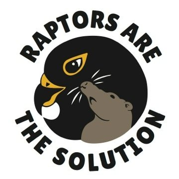 Raptors are the Solution is a San Francisco-based organisation that promotes wildlife-friendly ways to manage rodents, as poisons can harm the animals that eat the rodents!