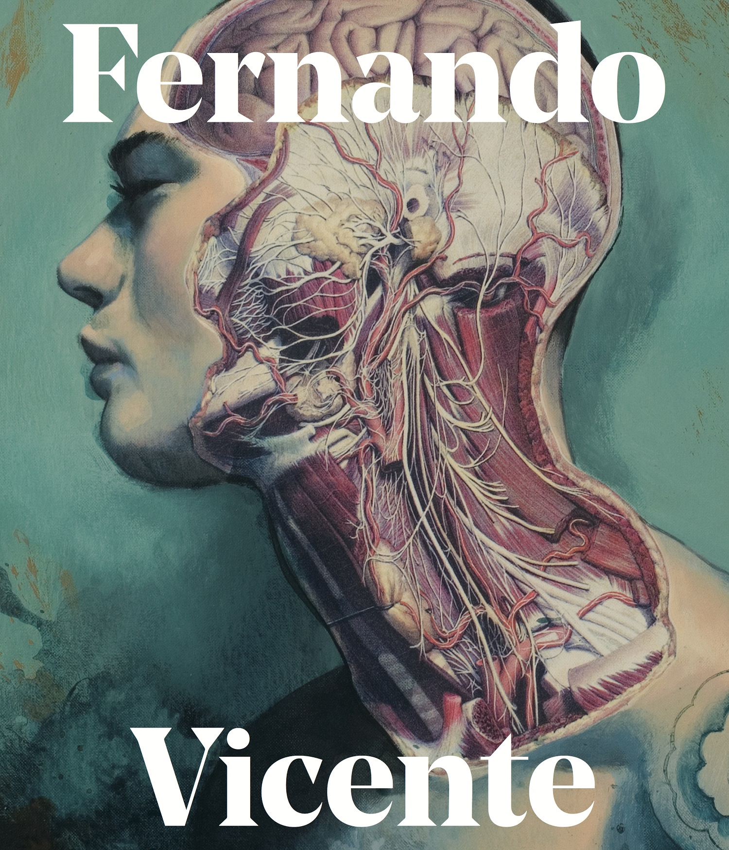 9781909399372 Fernando Vicente Cover.jpeg