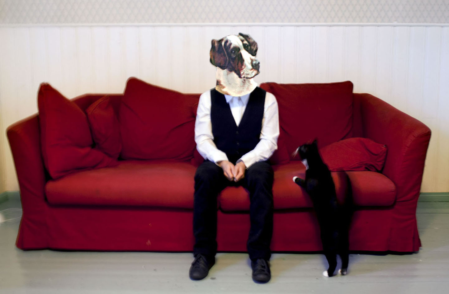Series: Die-Cut, Dog, 2011, 20cm x 13cm