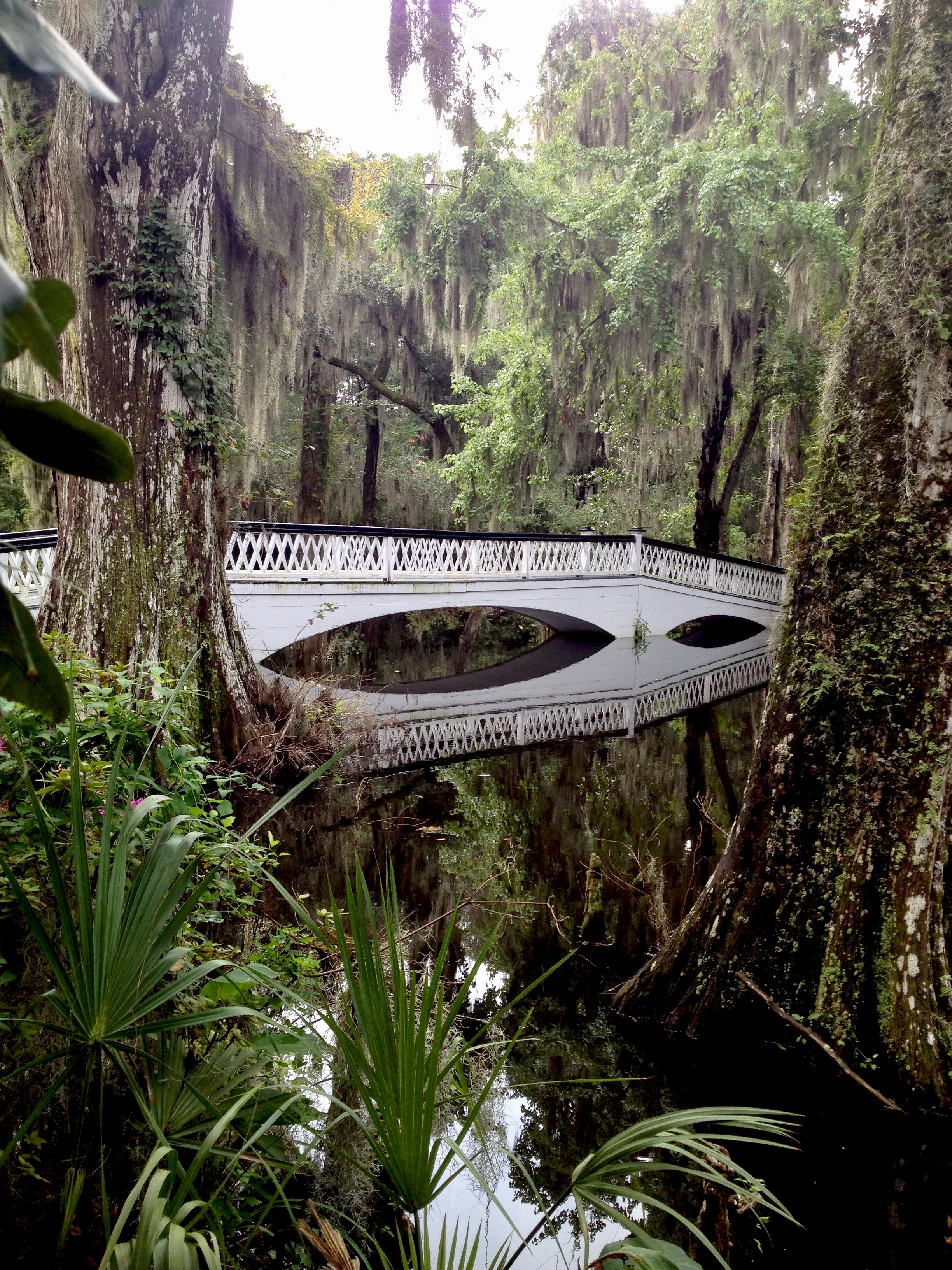 Magnolia Plantation on my weekend guide to charleston