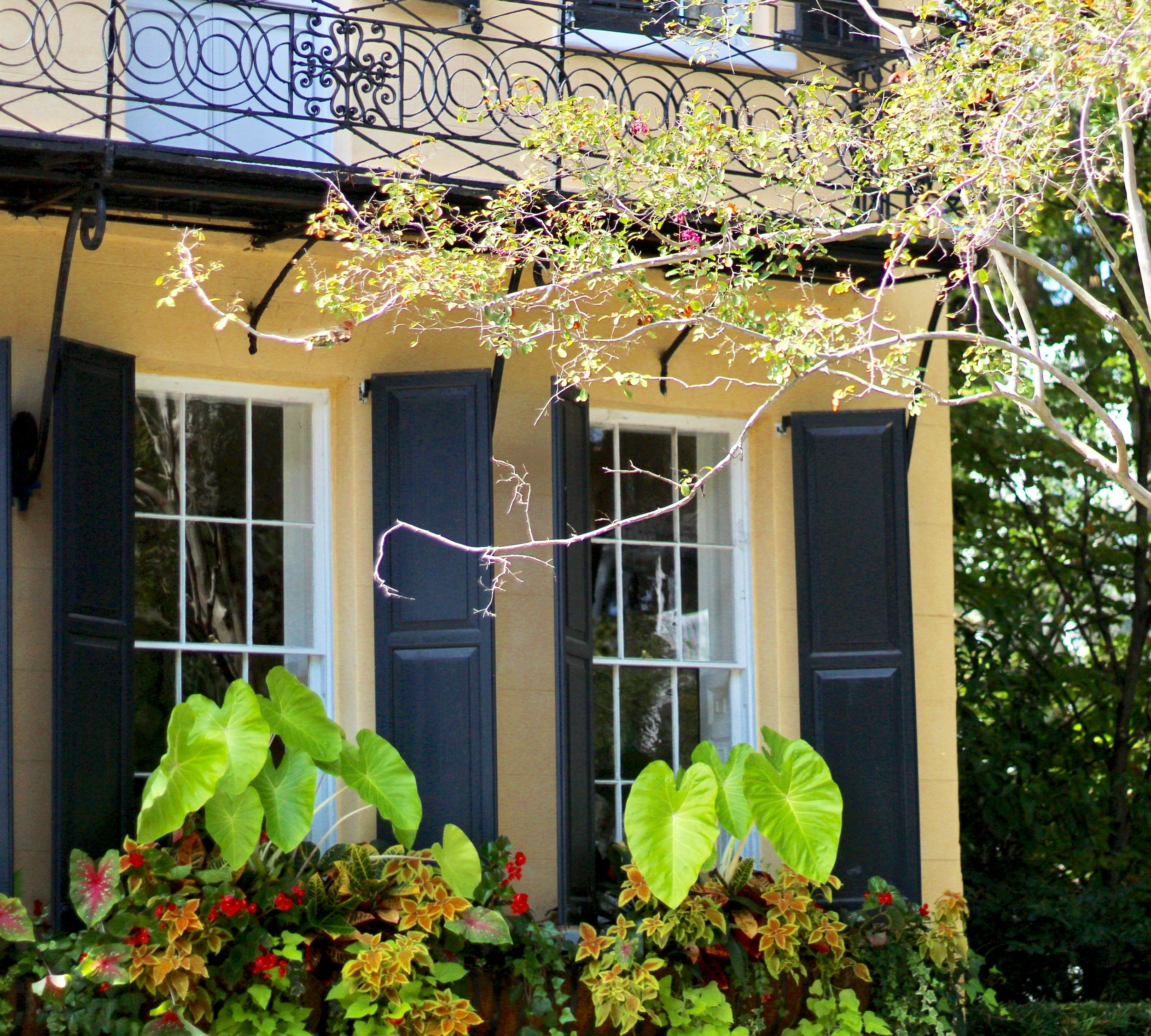 Travel guide to Charleston SC