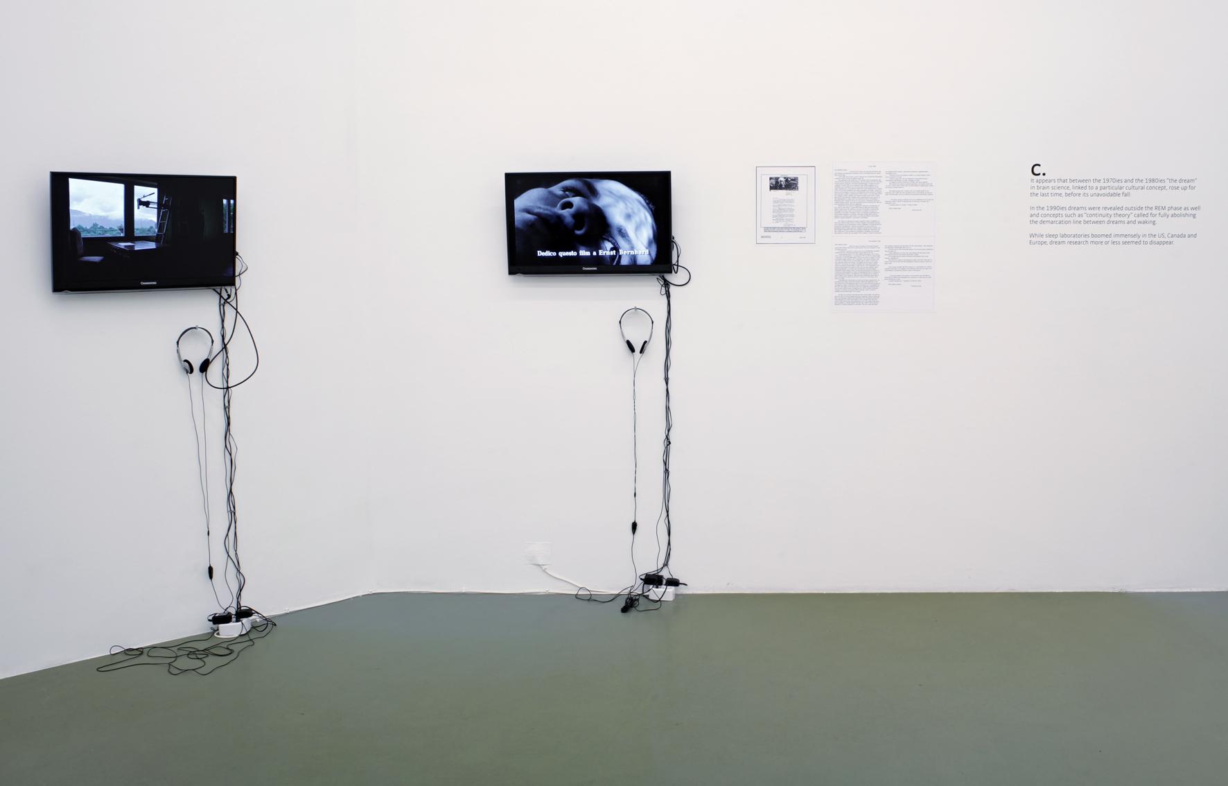 Mina Lunzer - Galerie Mezzanin 2014 #18.jpg