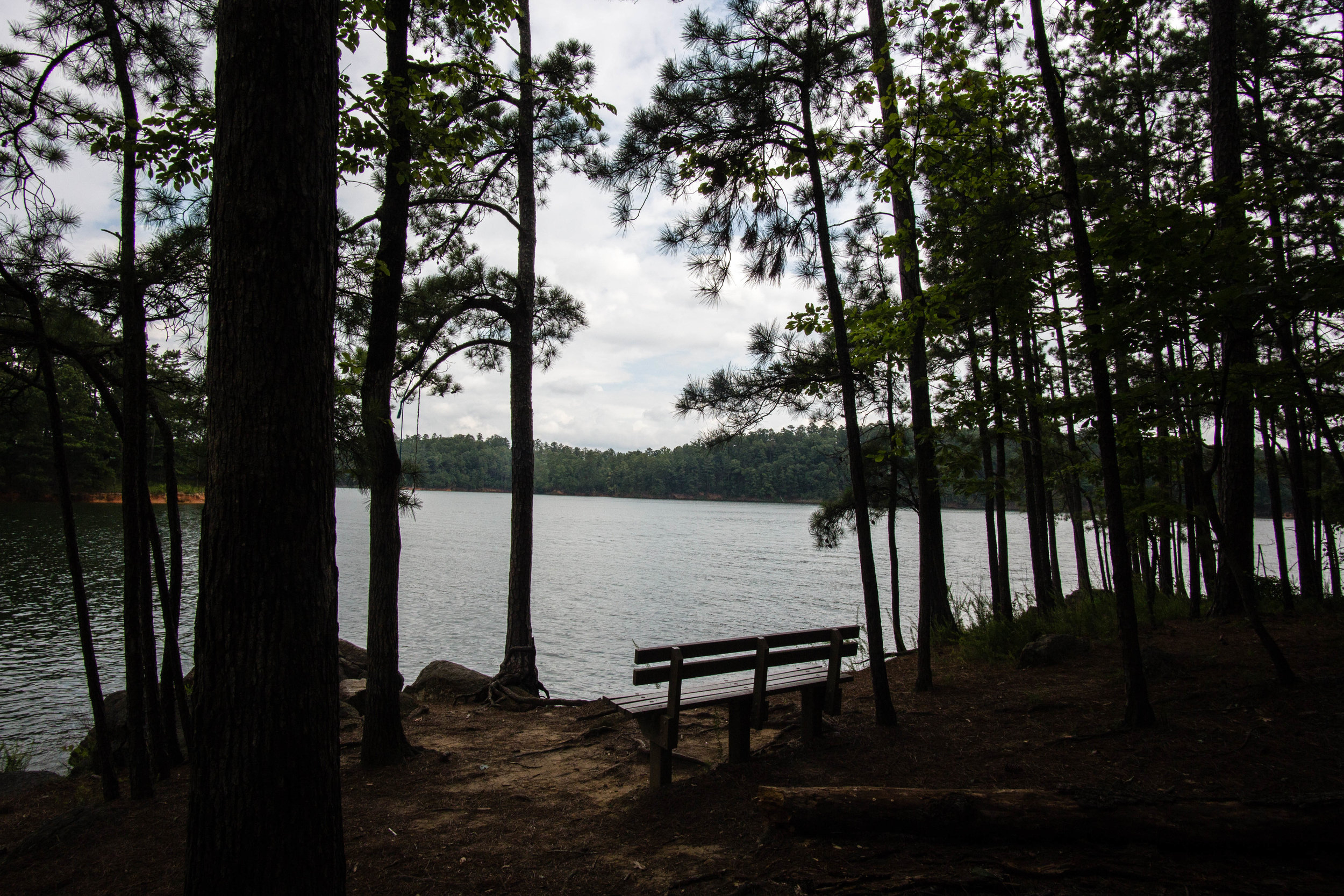 Lake Allatoona