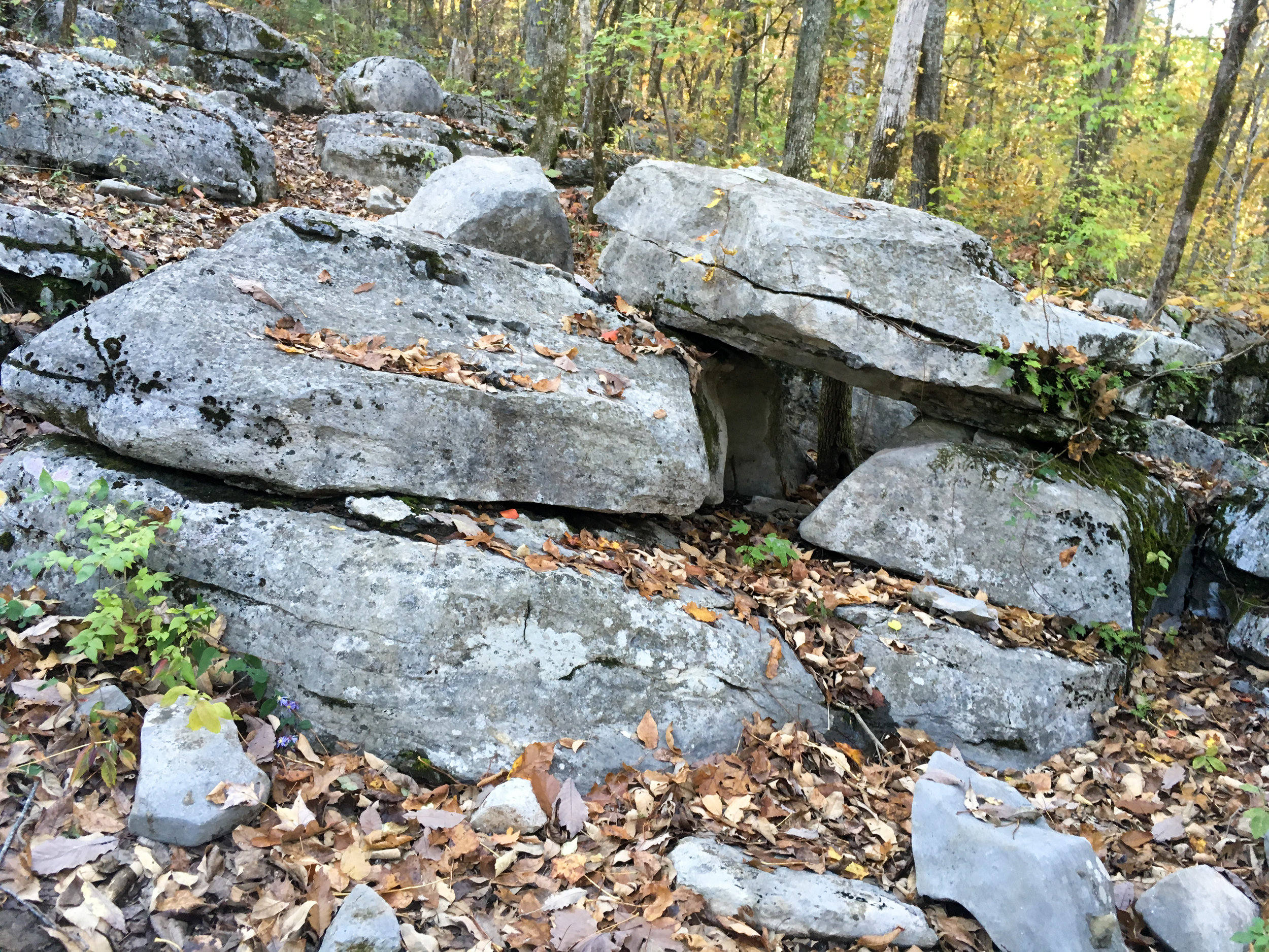 Outside the caverns, near the hiking trails; November 6, 2018