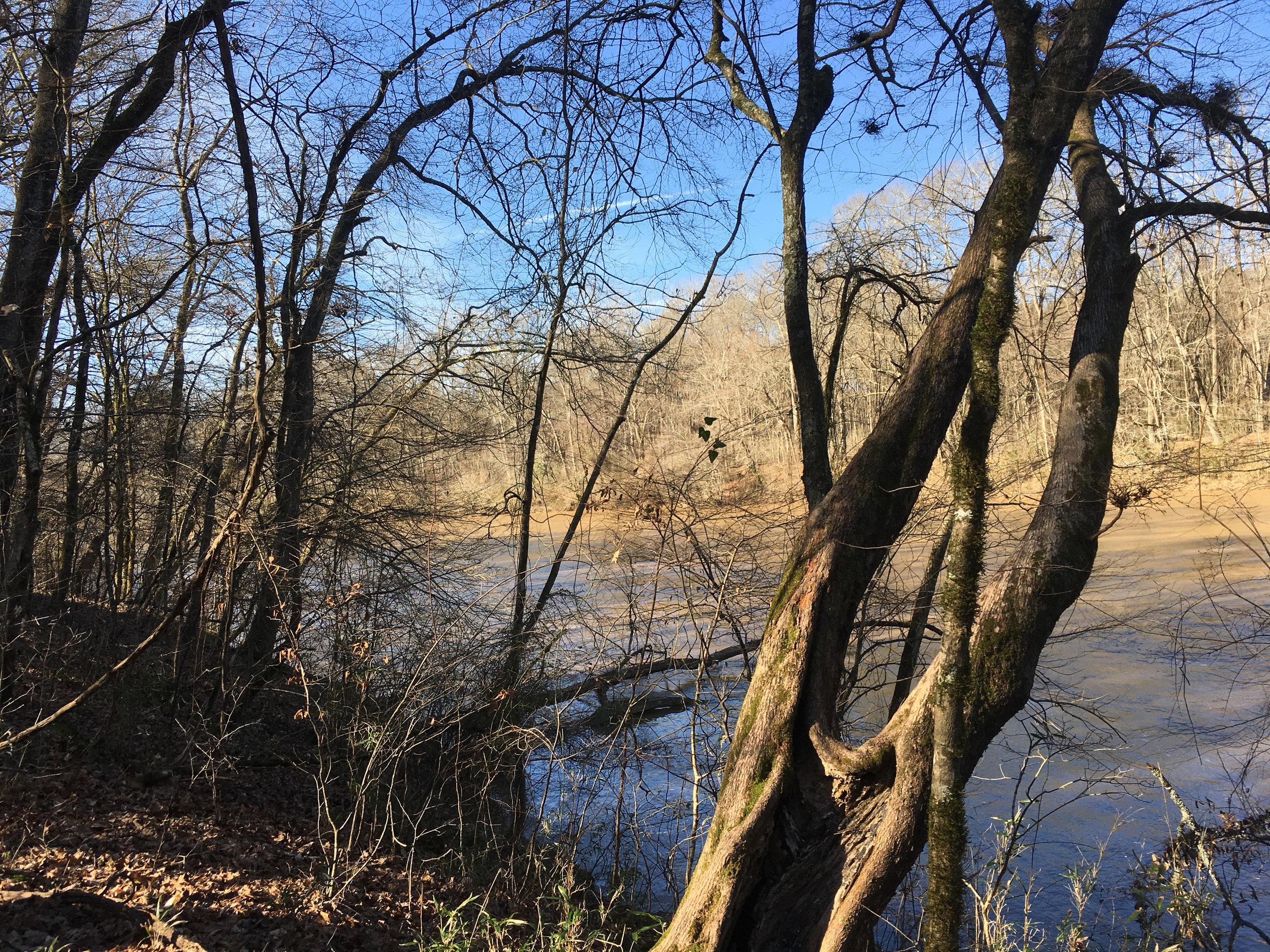 Chattahoochee River, January 25, 2019