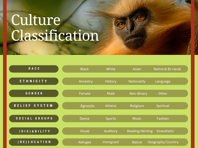** The above classifications are limited and non-inclusive but only highlight a few of so many categories of culture.