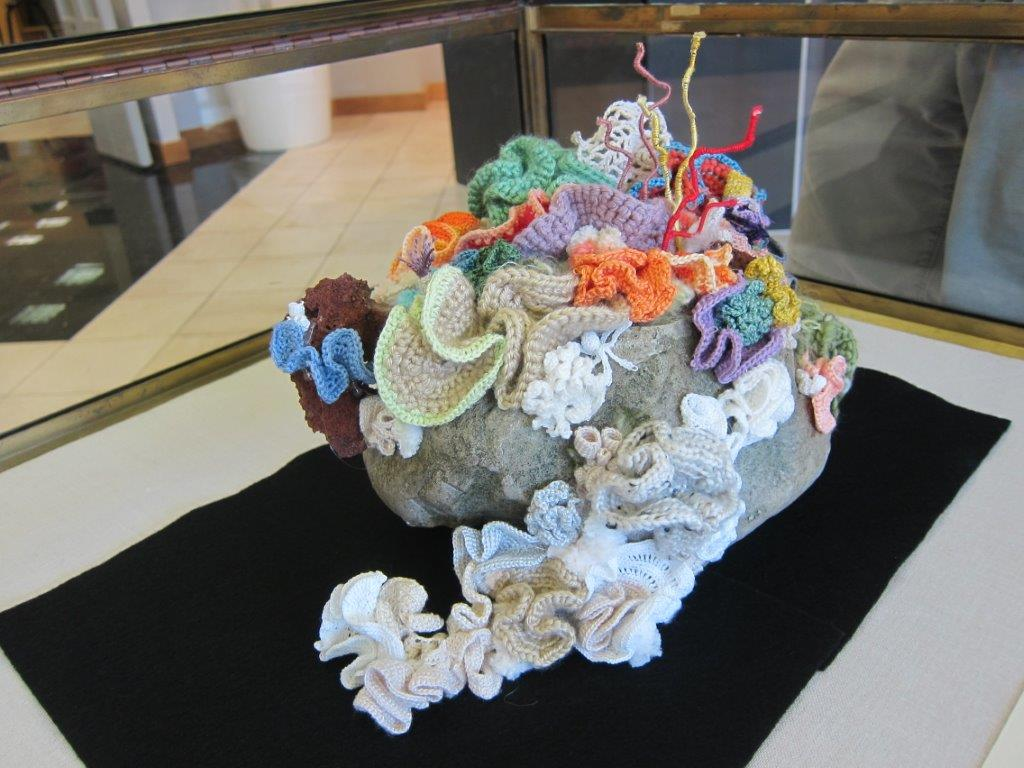 hyperbolic coral reef