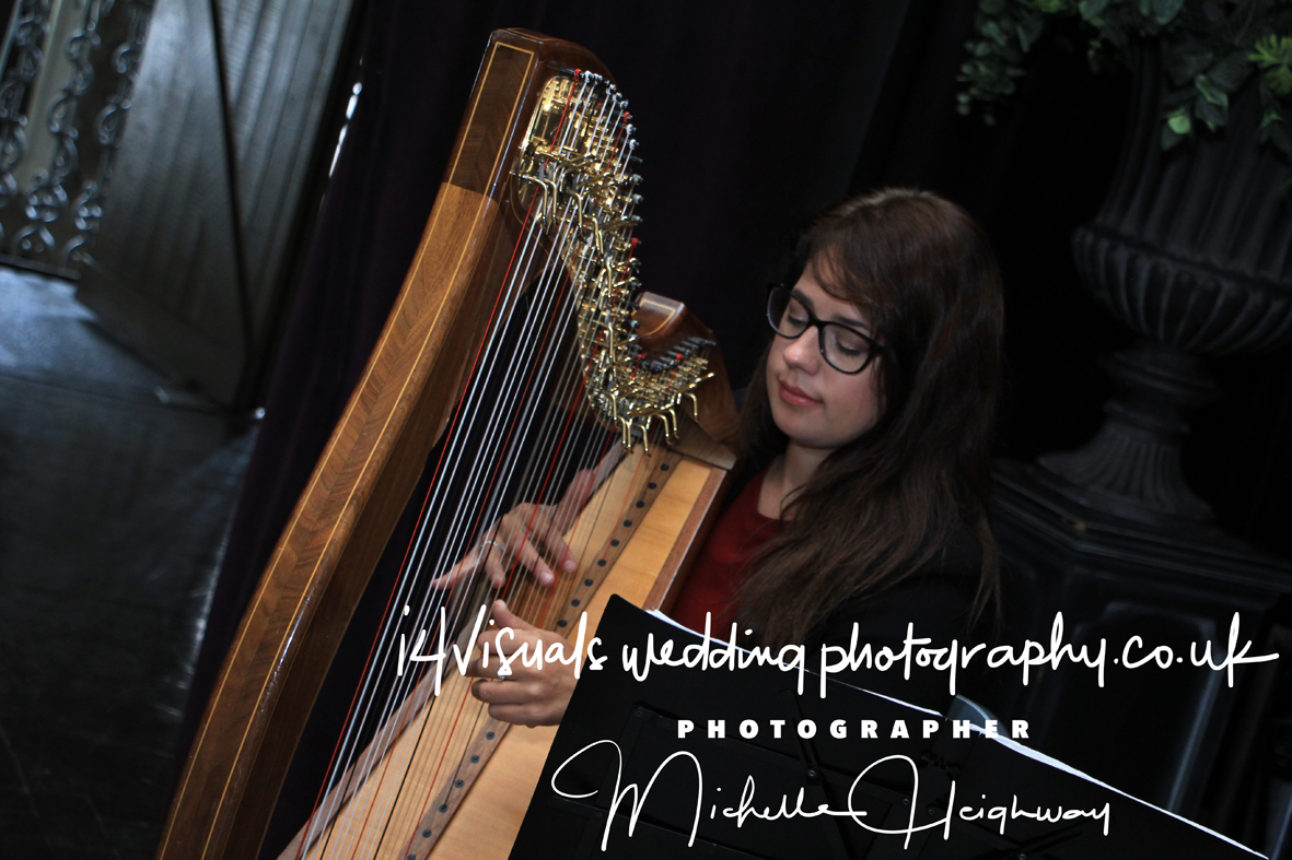 Harpist -