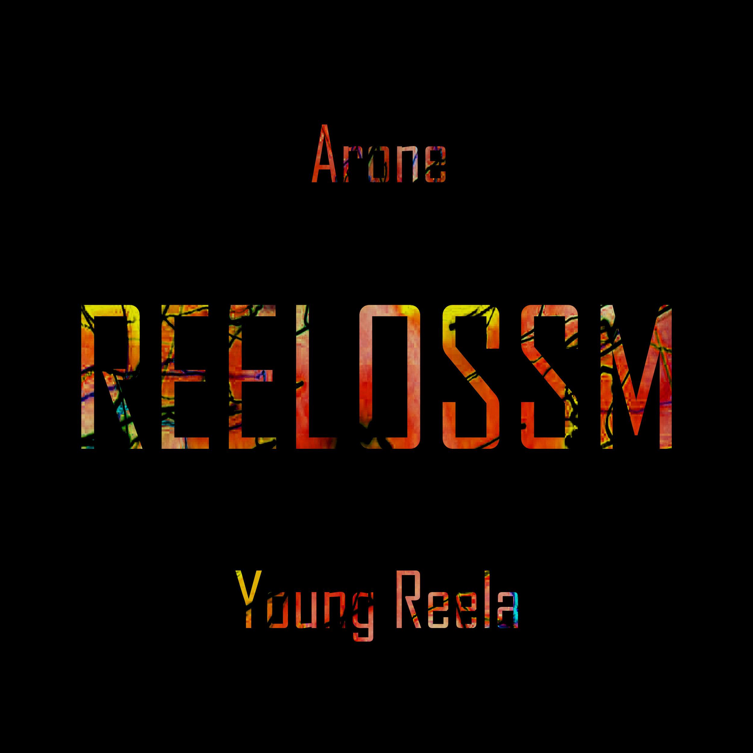 ReelOSSM cover.jpg