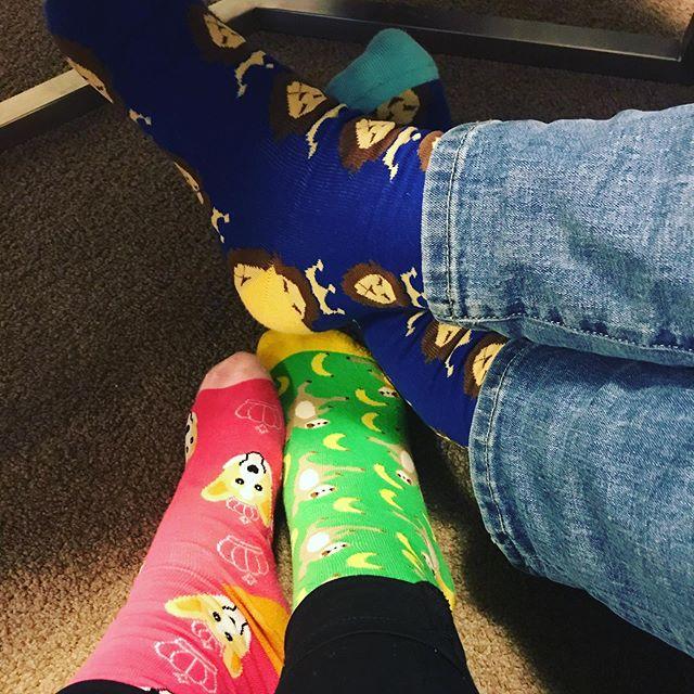 It's a Saturday sock sandwich 🥪  Thank you 📸 @gary_a_davis  #sockitupau #sockcess #socks #socksandwich #sloth #lion #corgi #socksoftheday