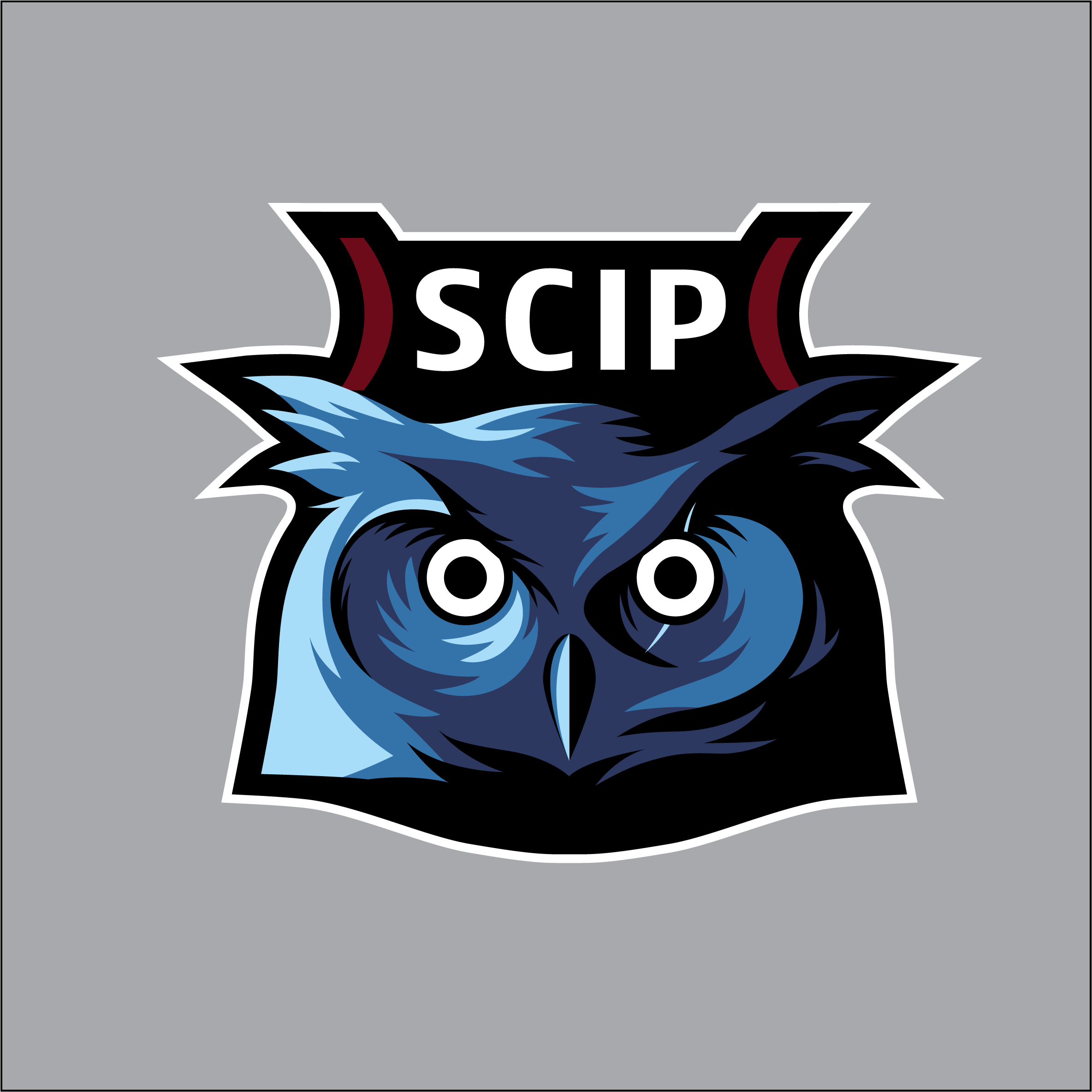 SCIP Team Blue.png
