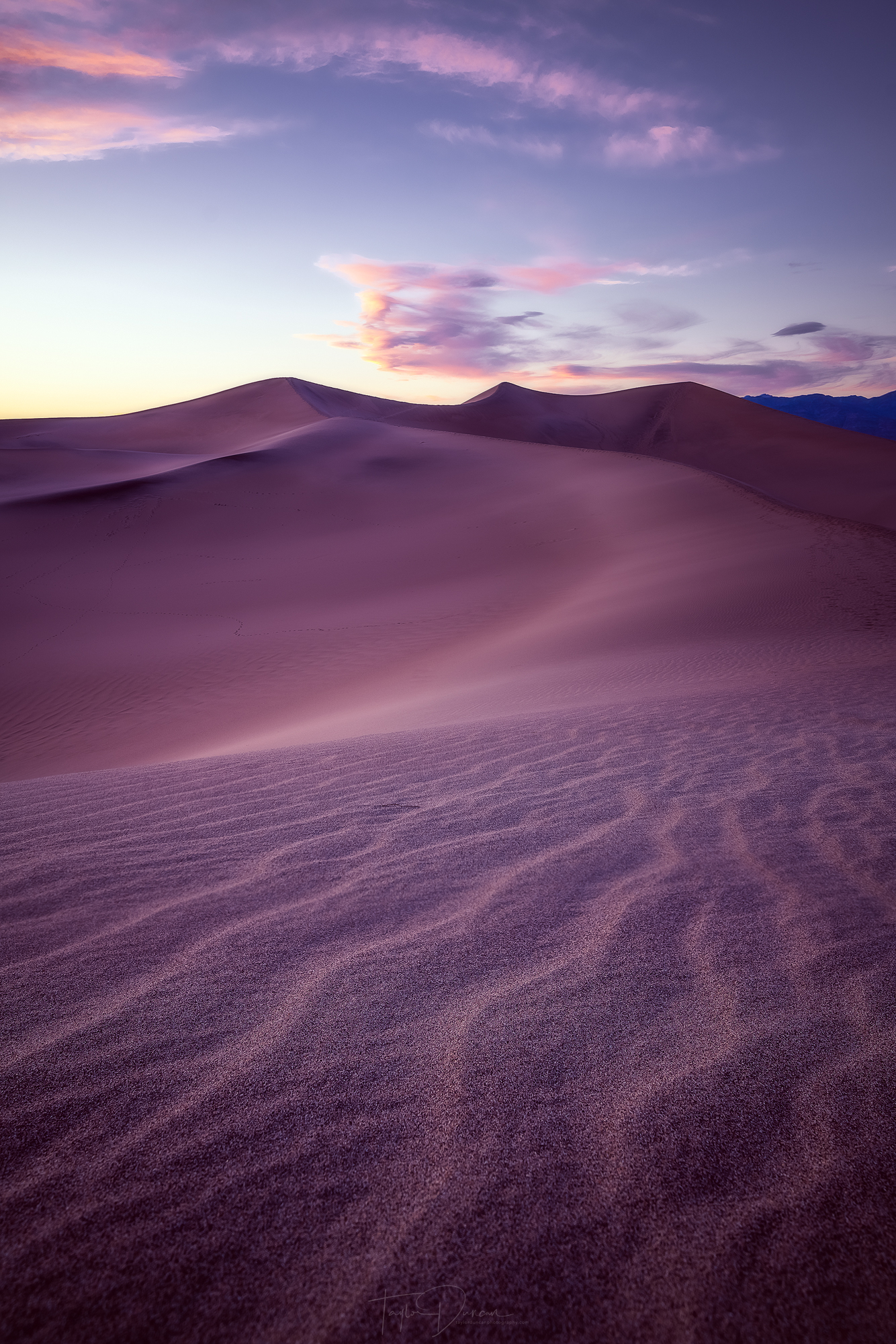 The dunes are incredible after the sun goes down!