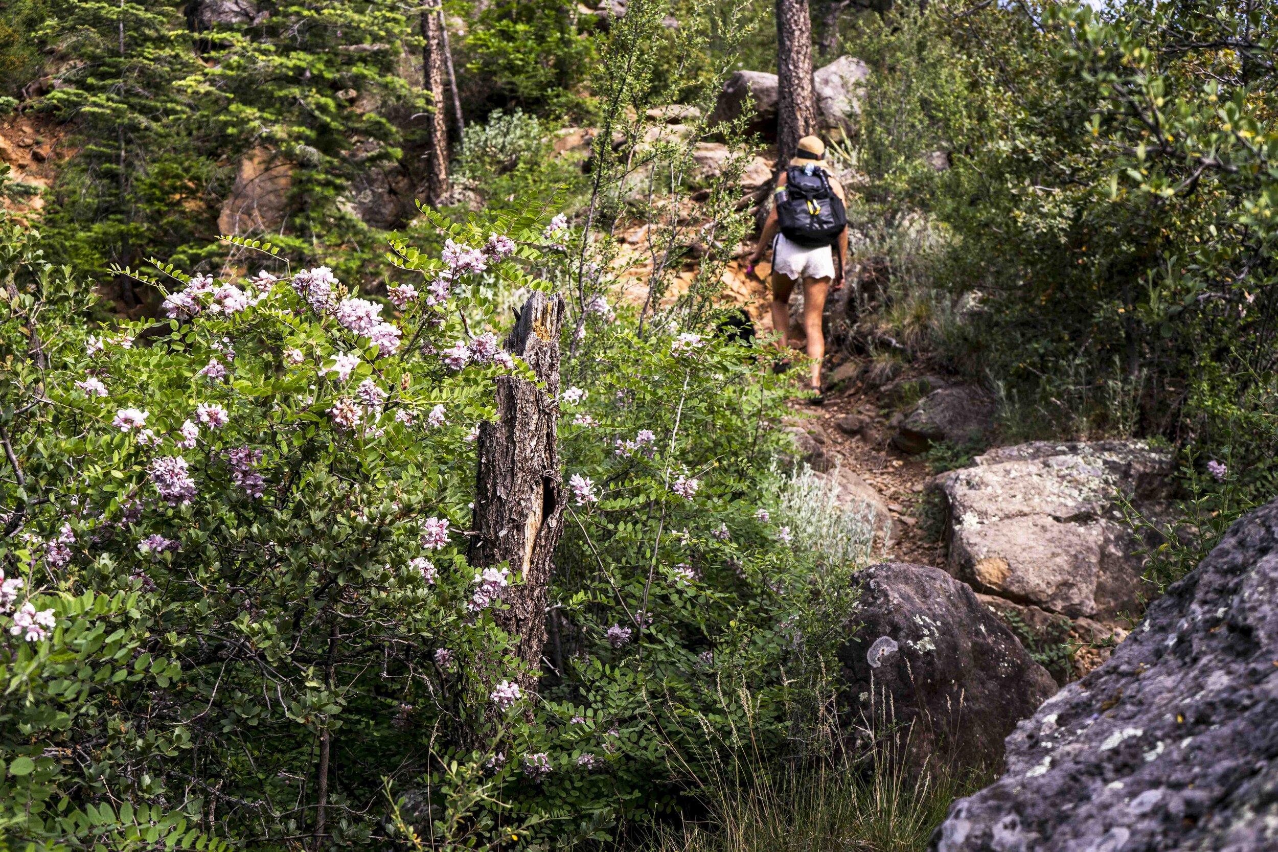 Girl hiking up Cookstove Trail in Sedona Arizona