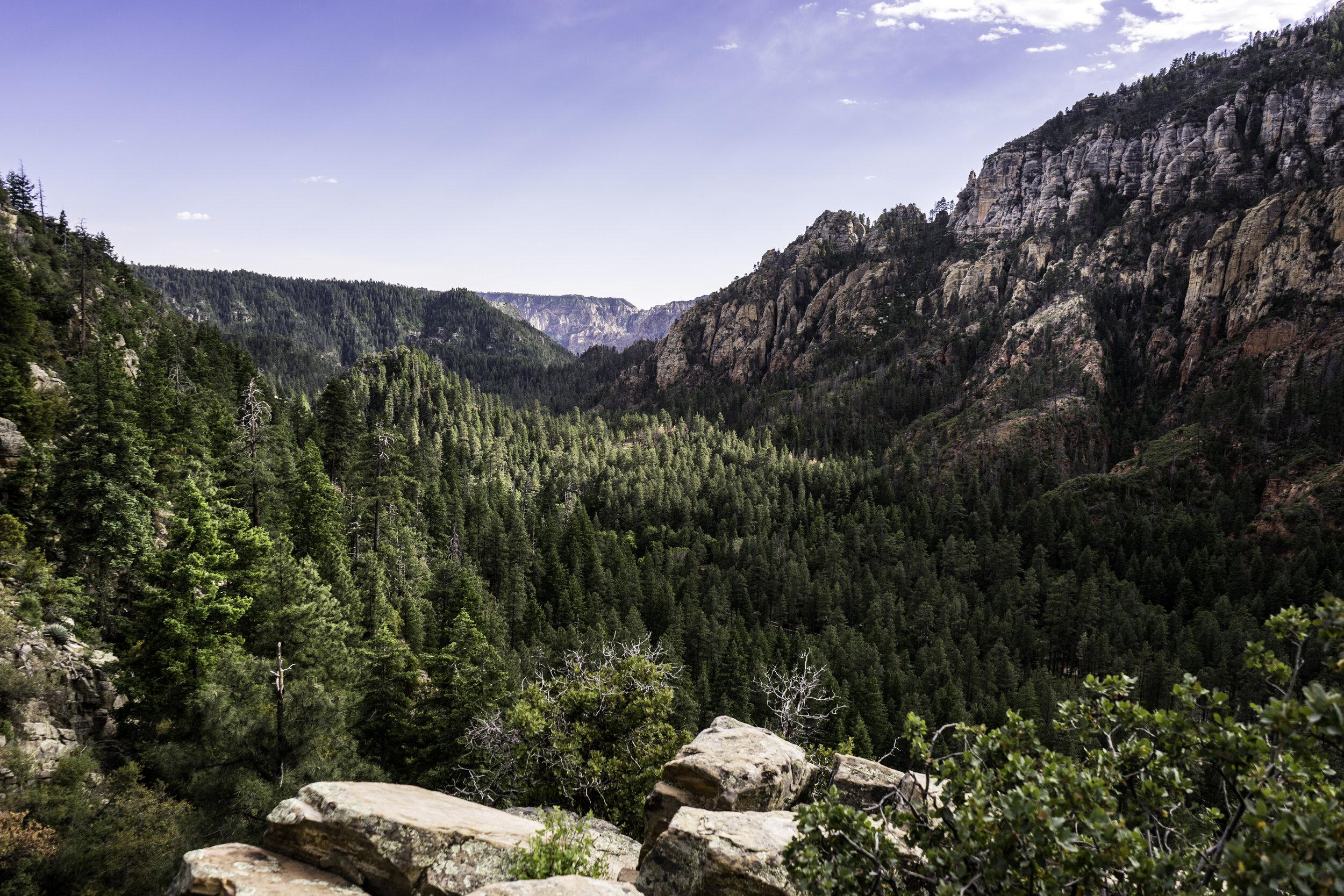 Scenic overlook of Oak Creek Canyon in Sedona, Arizona