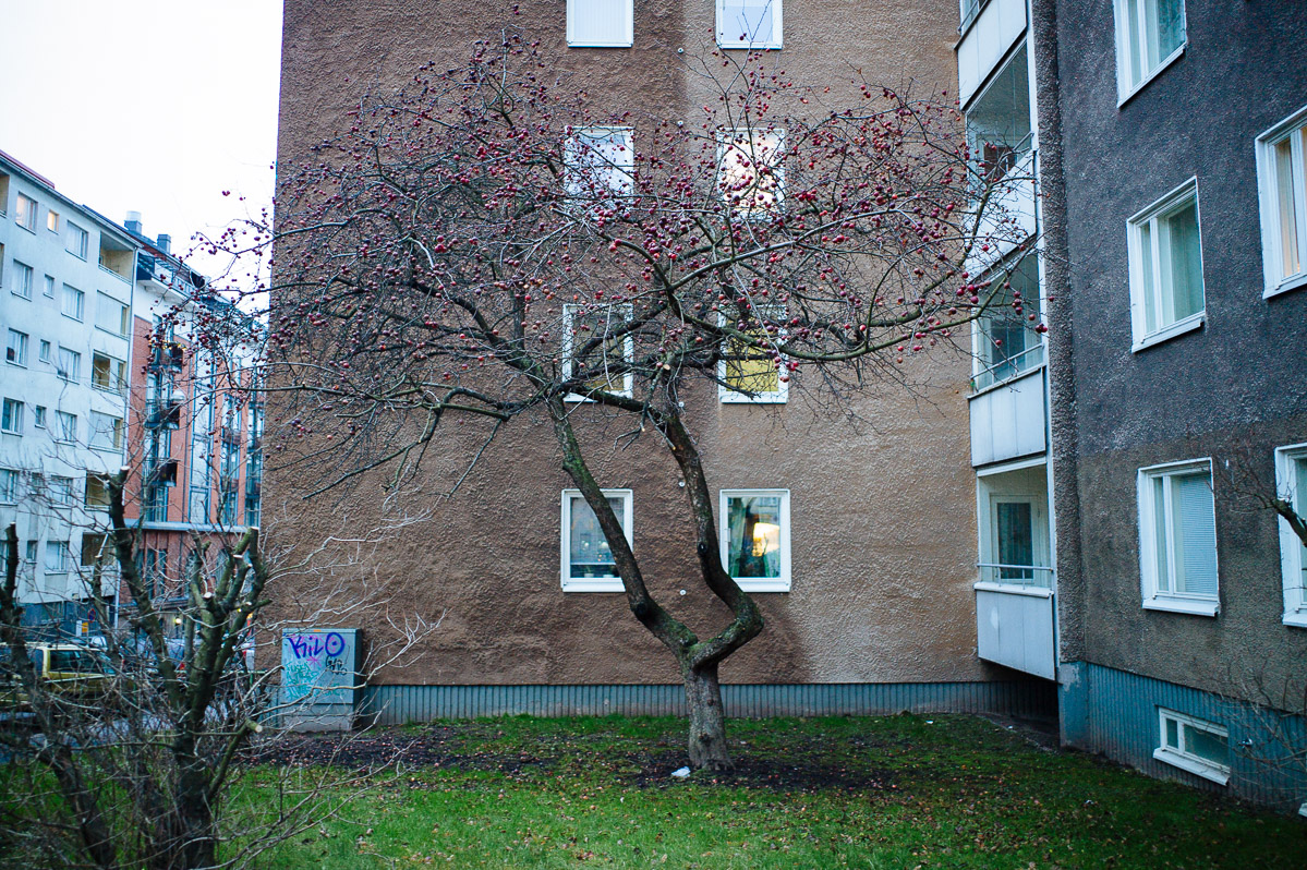 Käpylä Olympic Village, Helsinki