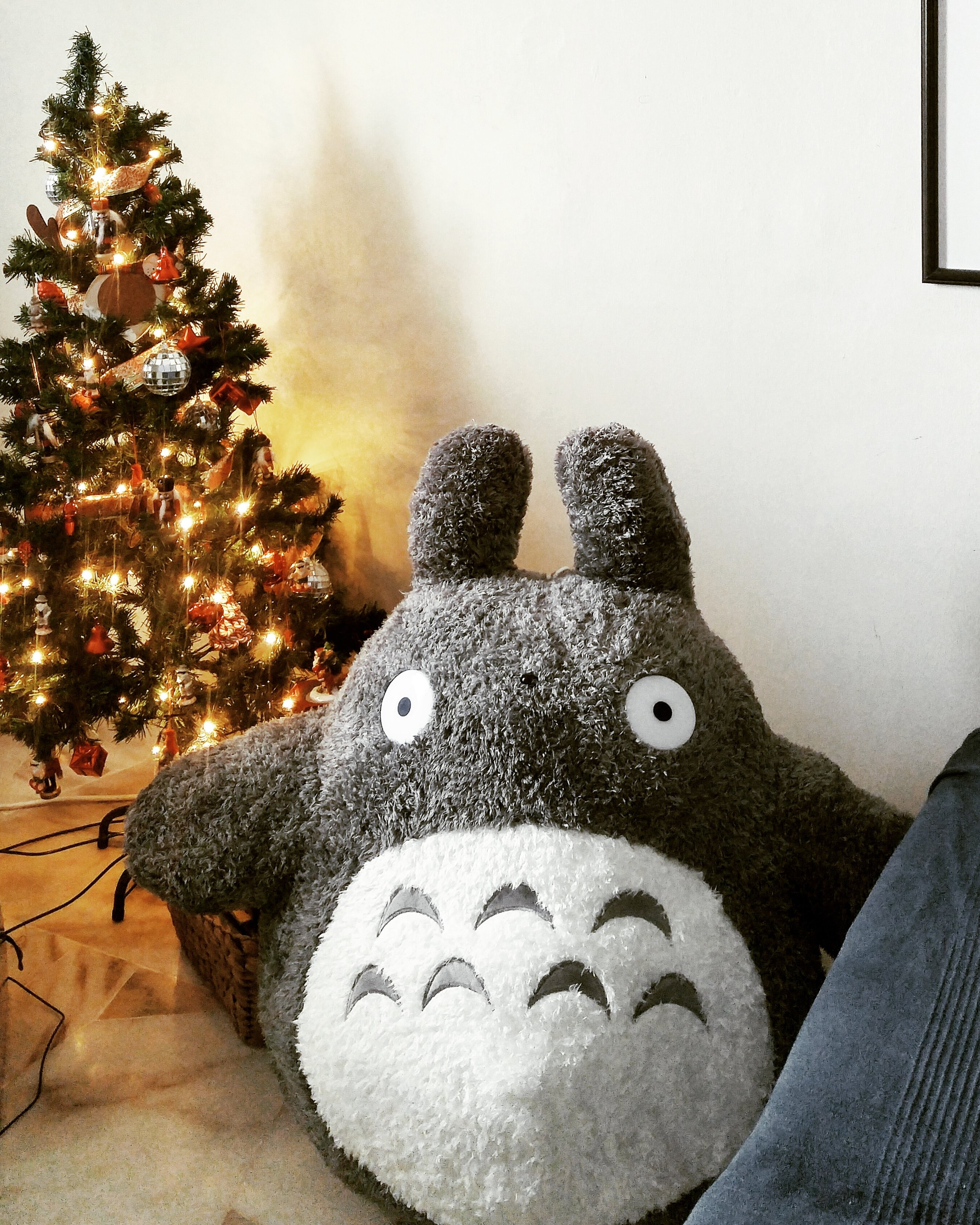 my christmas present arrived in time! a few months ago i babbled about how cute totoro is, and look who showed up :)