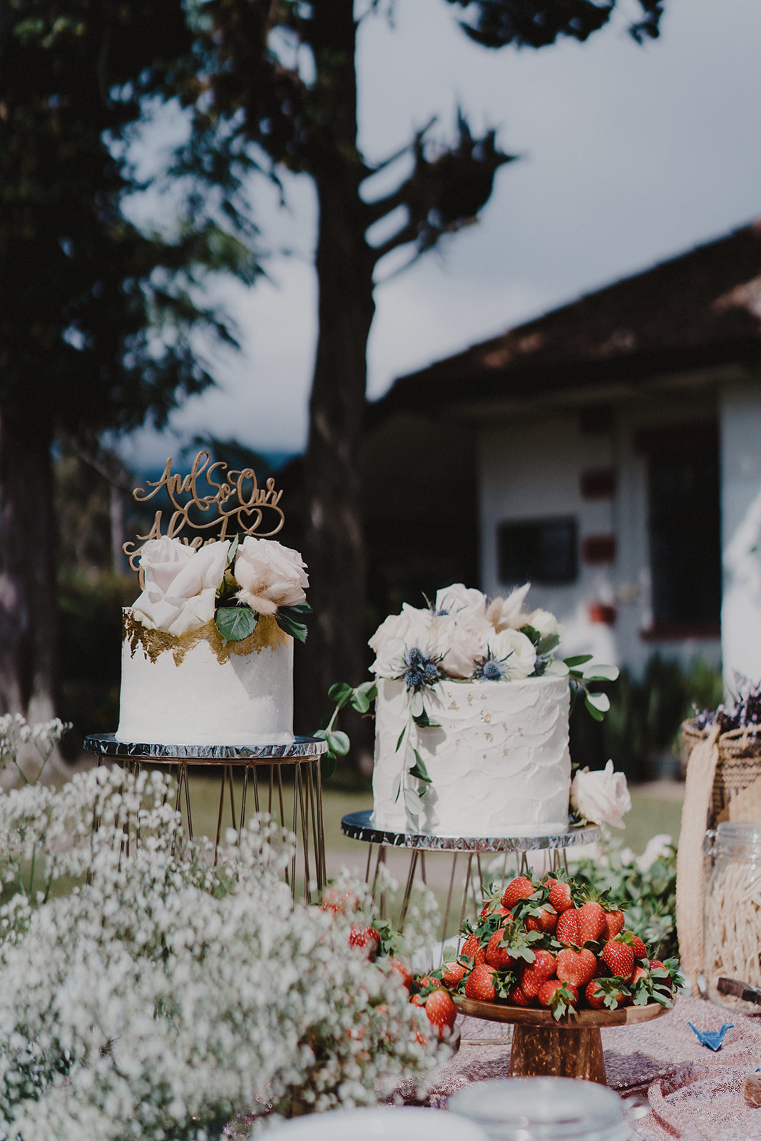 the floral-covered cake topping that says 'and so our adventure continues'. flavors: chocolate mint chip, lotus biscoff, both off-white buttercream adorned with fresh flowers.