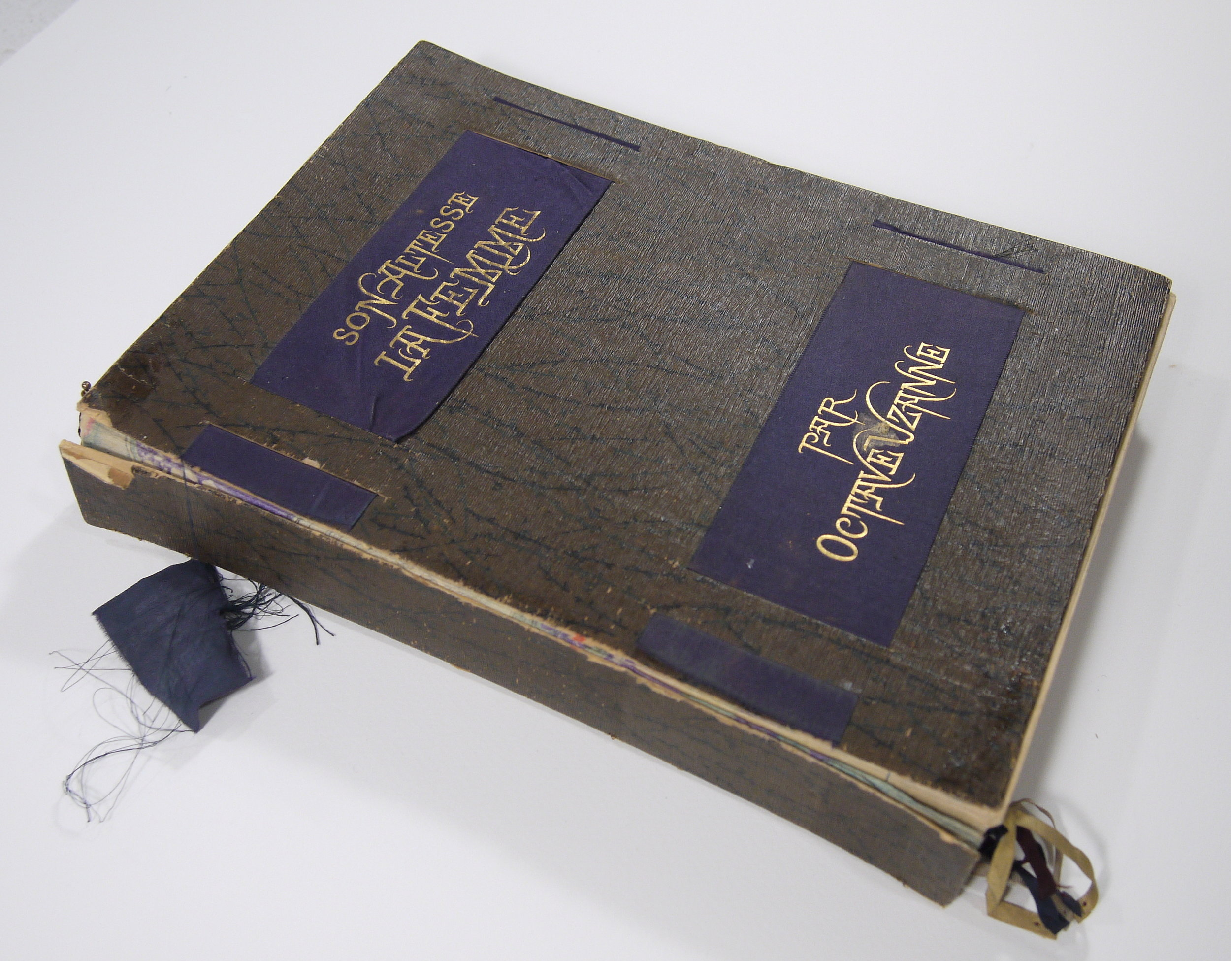 Son Altesse La Femme , Paris, 1885 Japanese style book with covering case. The joints of the case are split and the ribbons frayed.