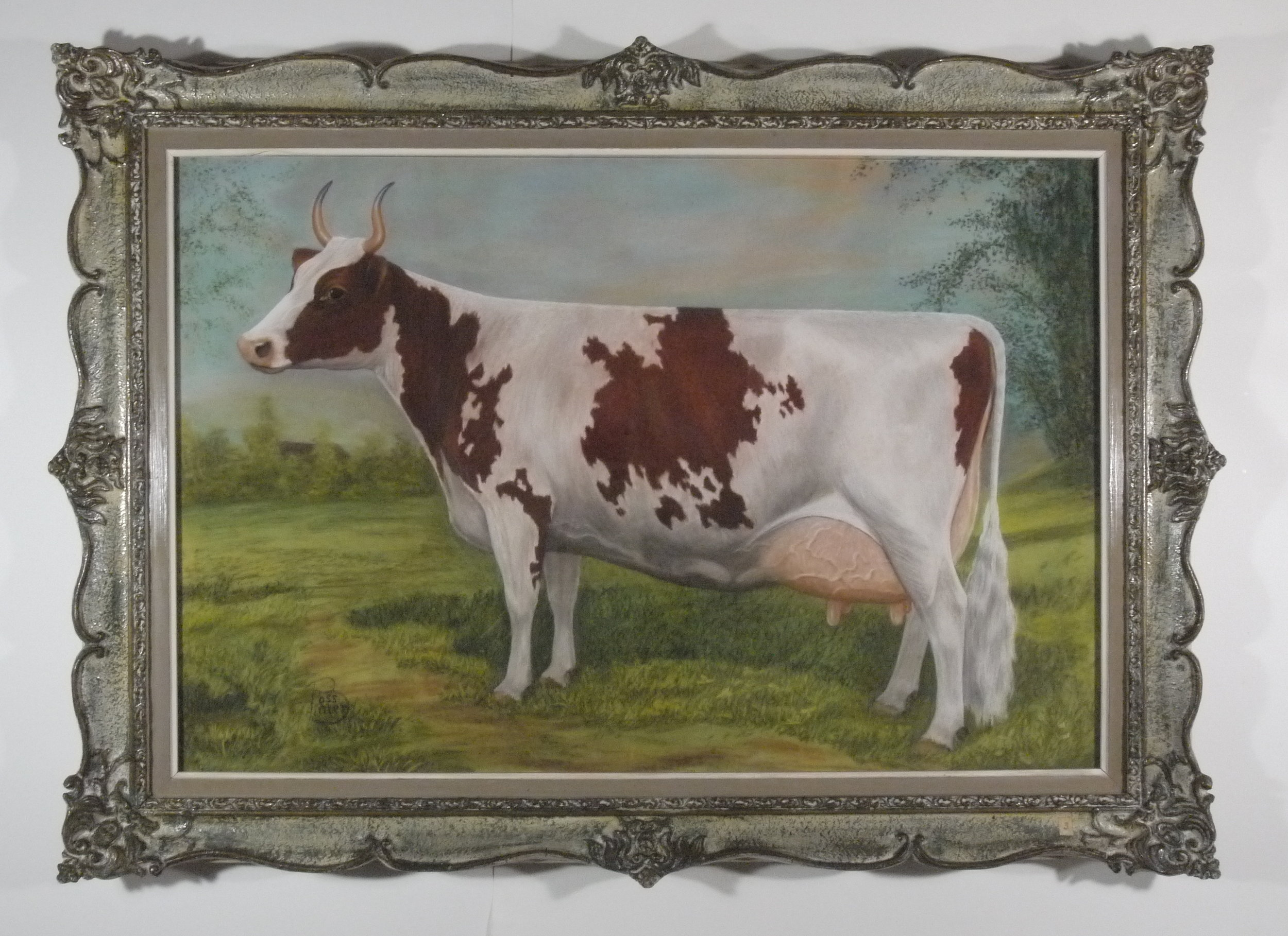 Ross Butler -  Ayrshire Cow , Pastel on Paper - After Conservation