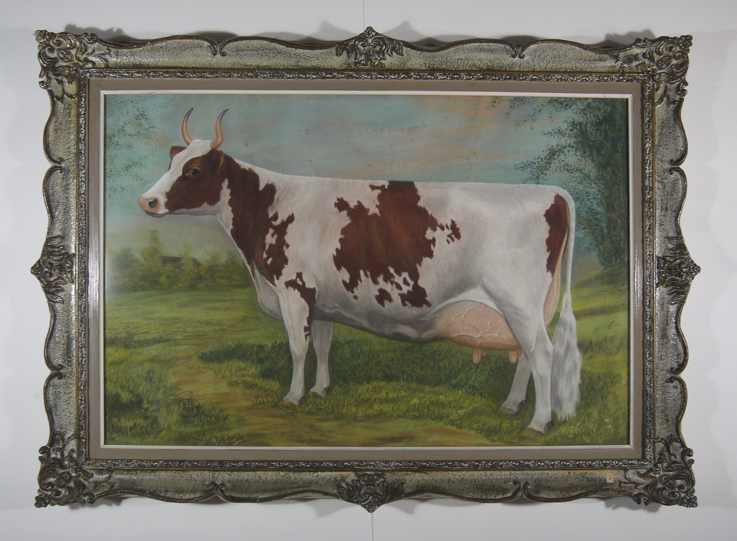 Ross Butler -  Ayrshire Cow  - Before Conservation