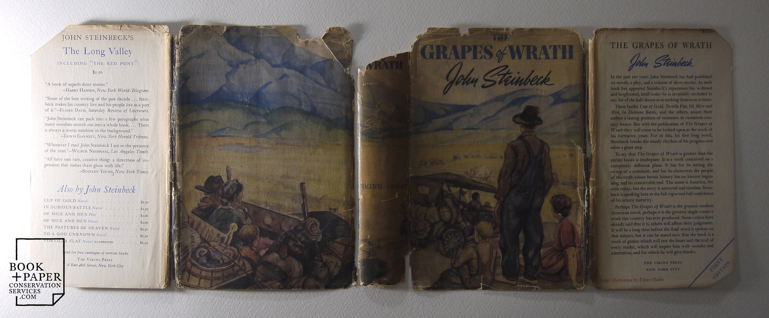 The Grapes of Wrath, 1st edition, dust jacket in raking light before restoration.