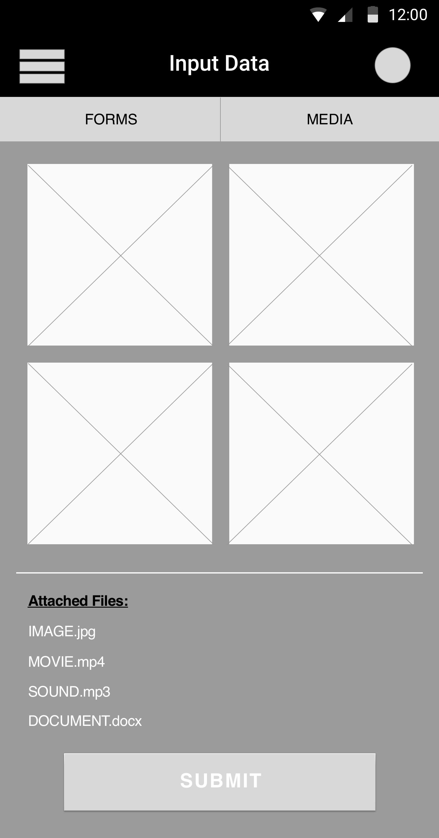 'Input Data' Screen