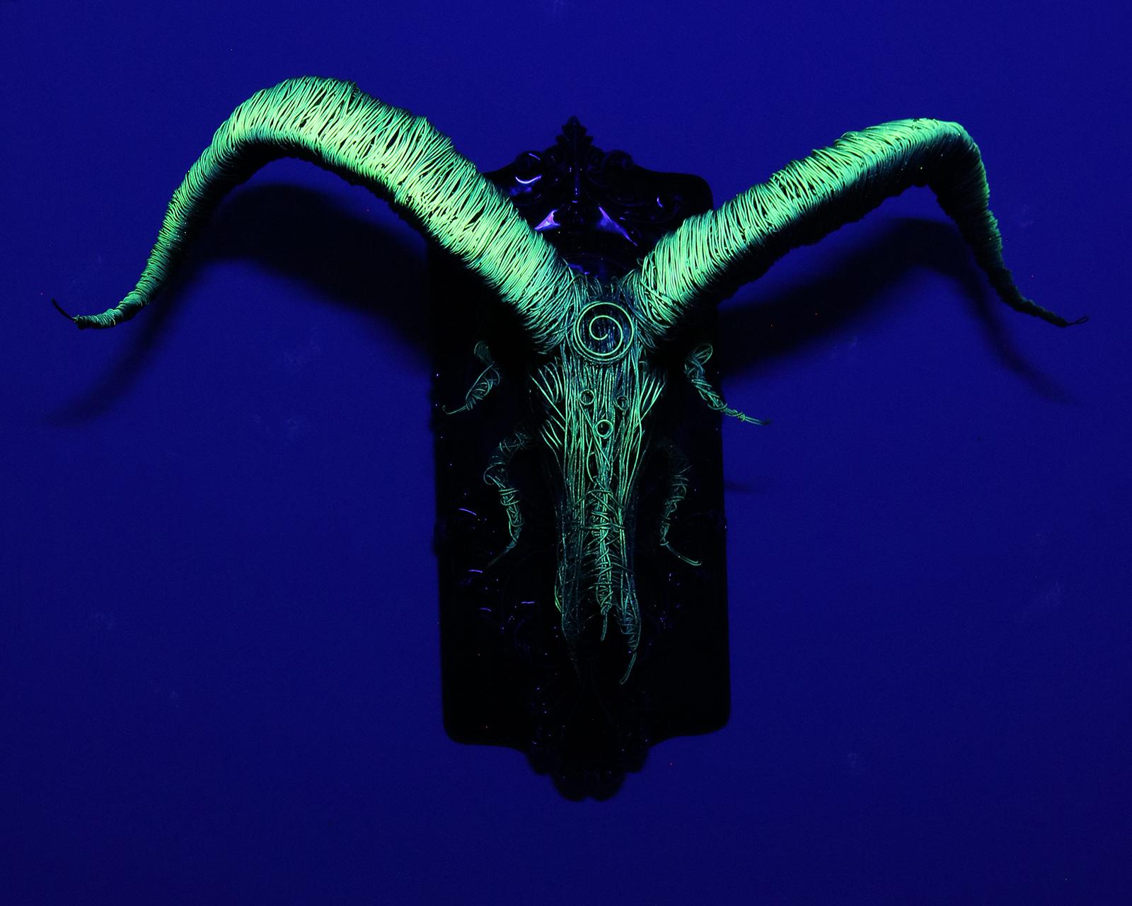 ARIES ASTRIS (Neon)