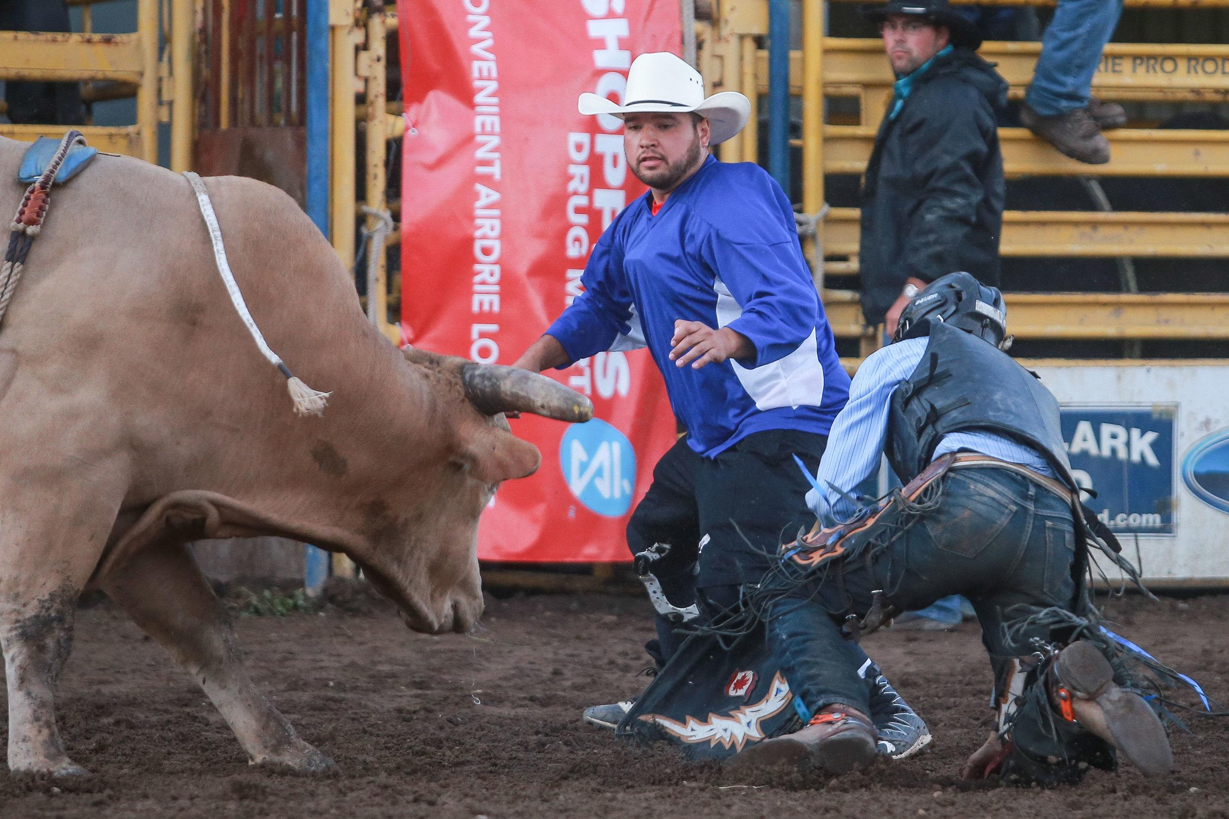 Bull riding 4.jpg